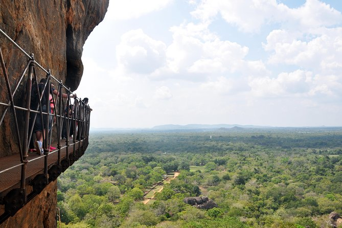 Sigiriya Rock and Wild Elephant Safari from Sigiriya (Private Day Tour) photo 10