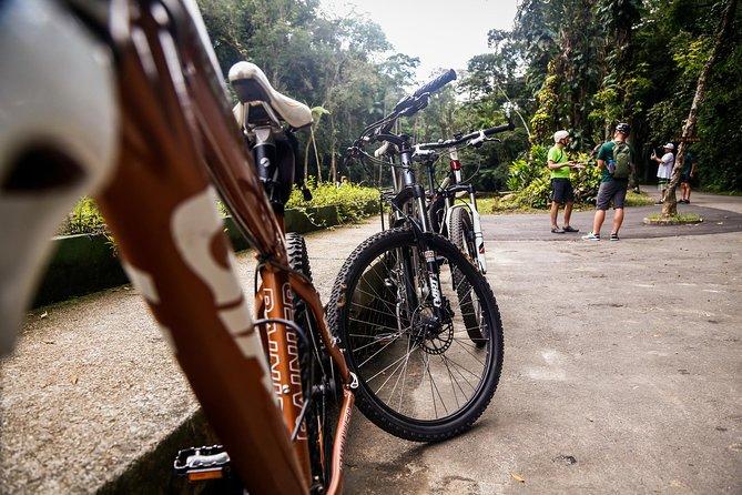 Bike Tour - Tijuca Rainforest Cycling Adventure