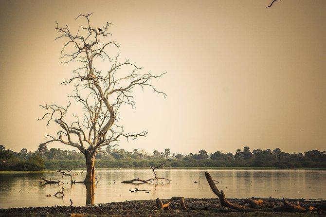 3 Days Safari - Selous Game Reserve