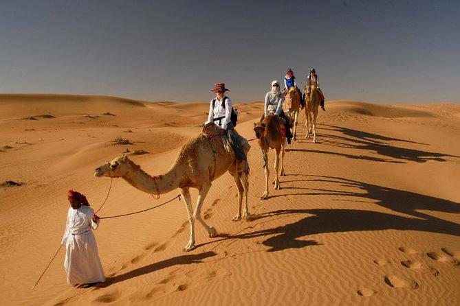Camel Trekking Dubai with Morning Dune Bashing and Sand Boarding