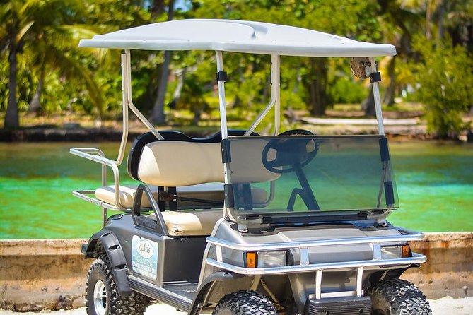 Avis Golf Cart Rental LTD Island Explore