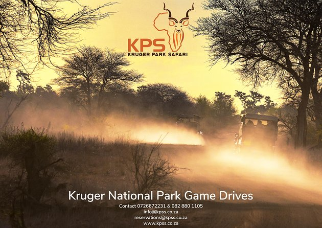 Kruger Park Safari - Safari in the Kruger National Park