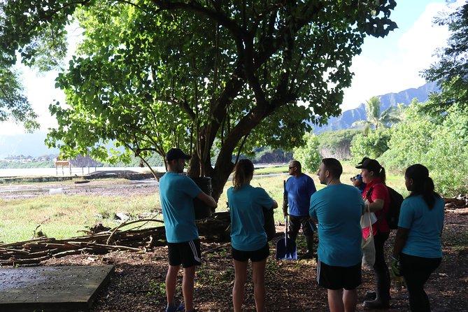 Menehune Enterprises Farm & River Adventure Voluntour (travel2change)