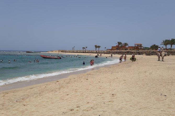 Turtles Bay, Swimming with Turtles Hurghada & Marsa ALam