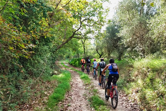 Eleftherna E-Bike and MTB Tour Experience The Authentic Crete
