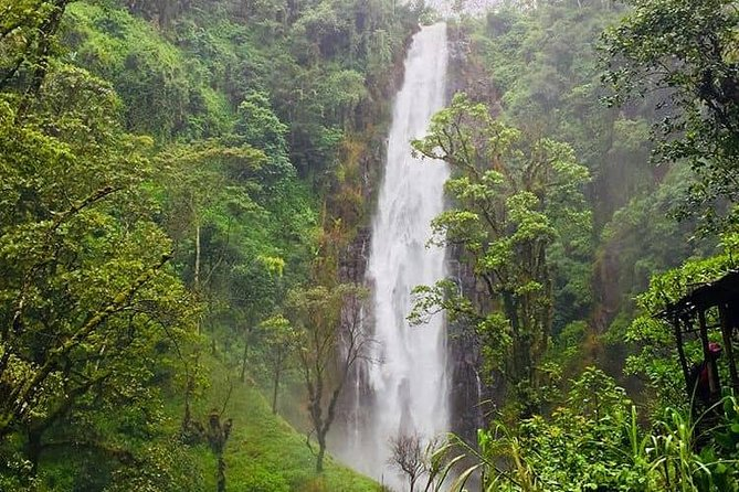 Materuni village, waterfall and coffee tour day trip photo 3