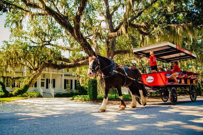 View historic homes by horse & carriage