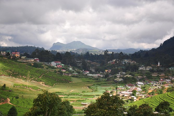 Nuwara Eliya from Kandy by Train (Private Day Tour) photo 3