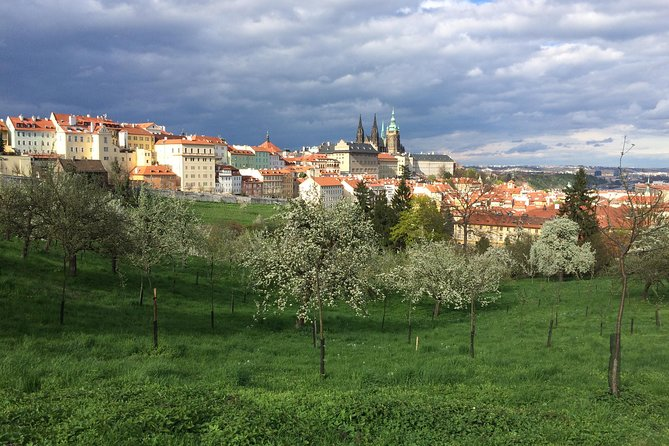 City tour to the top 10 sights in Prague