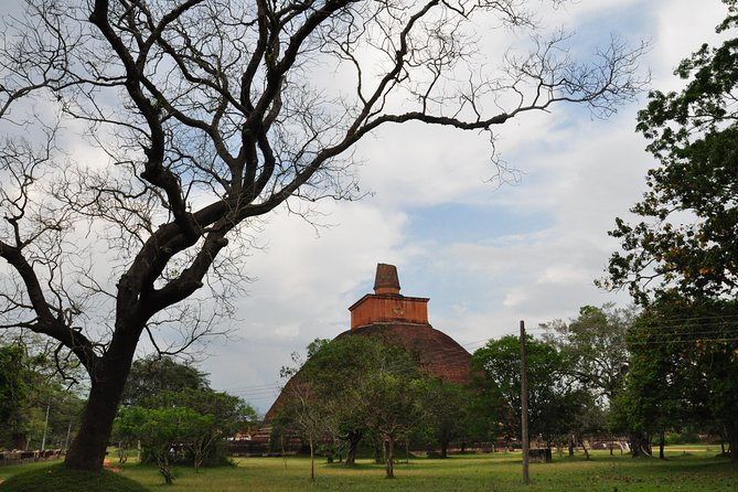 Sacred City of Anuradhapura from Negombo (Private Day Tour) photo 6