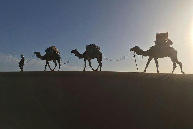 Sahara Express - Camel Trek & 4x4 - Erg Chigaga Great Dunes, depart M'Hamid