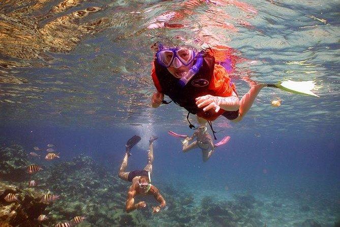 Cozumel Local Snorkel Trip