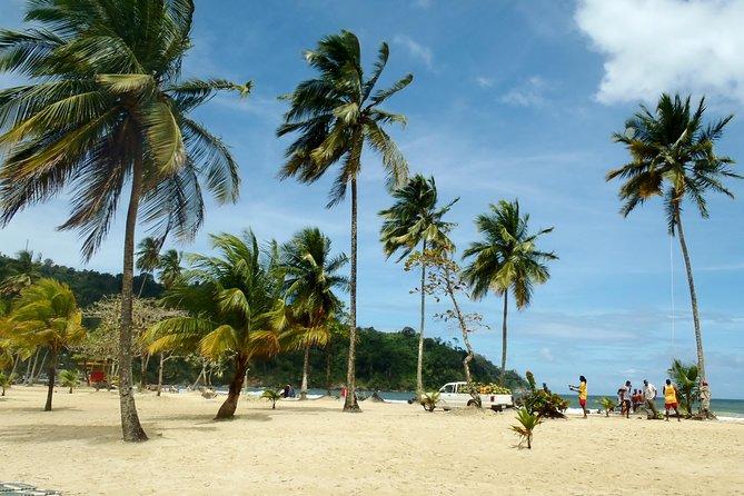 Day Trip to Maracas Beach