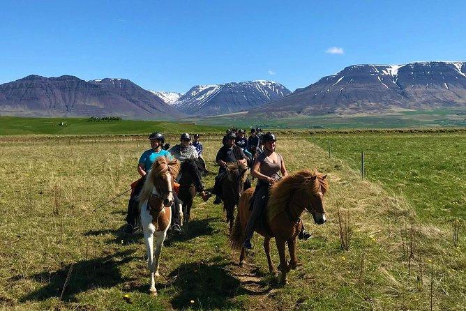 Horse Riding Tour in Varmahlíð