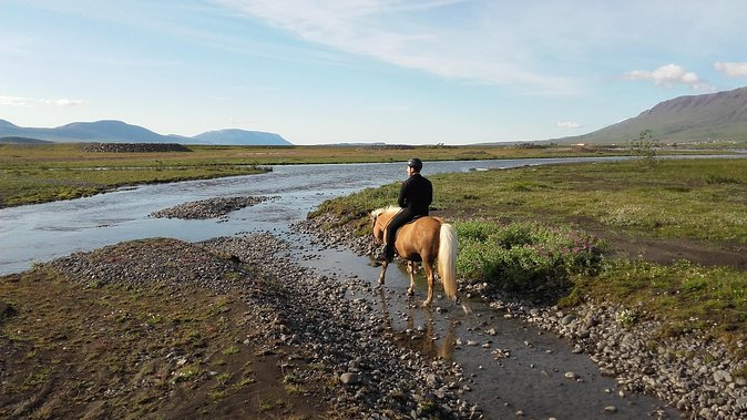 Horse Riding Tour to the Glacier River Delta with Waterfall - 3 hours photo 10