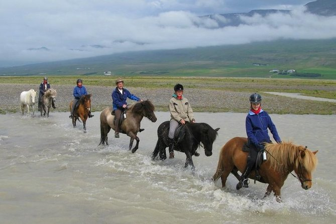 Horse Riding Tour to the Glacier River Delta with Waterfall - 3 hours photo 15