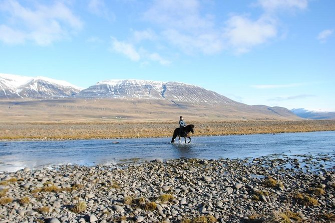Horse Riding Tour to the Glacier River Delta with Waterfall - 3 hours photo 12