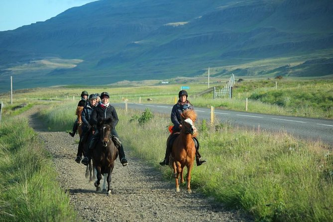 Horse Riding Tour to the Glacier River Delta with Waterfall - 3 hours photo 4