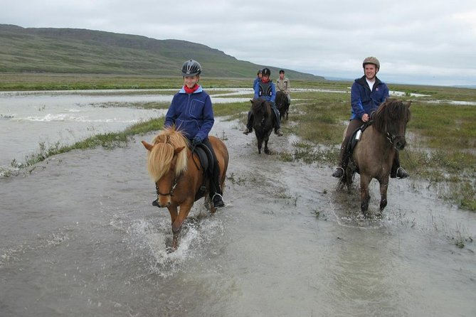 Horse Riding Tour to the Glacier River Delta with Waterfall - 3 hours photo 13