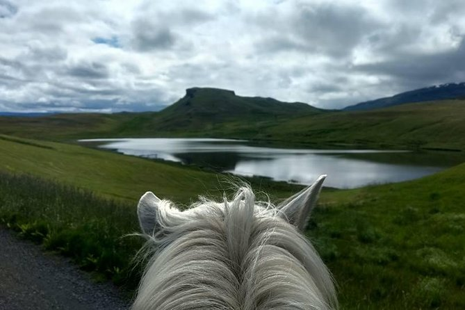 Horse Riding Tour to the Glacier River Delta with Waterfall - 3 hours photo 3