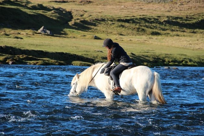 Horse Riding Tour to the Glacier River Delta with Waterfall - 3 hours photo 9