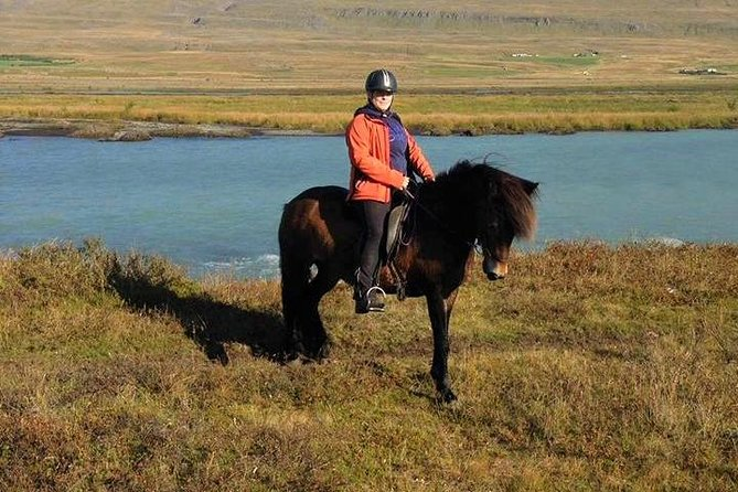 Horse Riding Tour to the Glacier River Delta with Waterfall - 3 hours photo 8