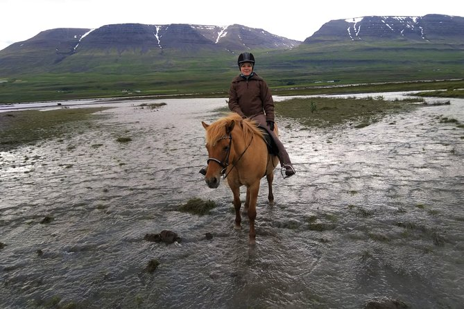 Horse Riding Tour to the Glacier River Delta with Waterfall - 3 hours photo 11