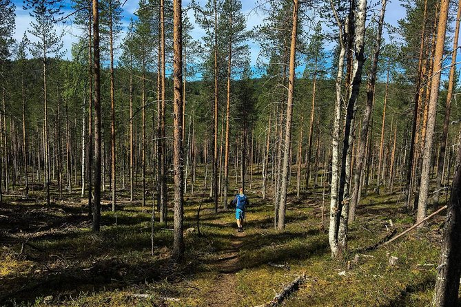 Autumn Hiking Day and Evening Northern Lights Tour