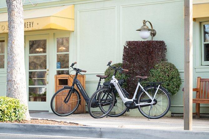 Electric Bike Fleet