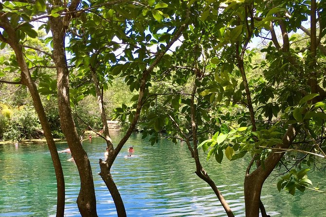 Cenotes bike tour with food