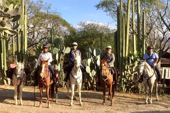 Overnight Horse Riding Adventure & Ranch Stay
