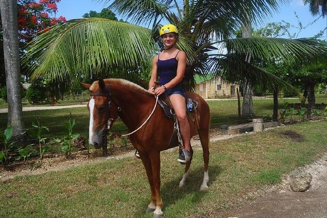 Horse Ride - Suzuka Tours Punta Cana