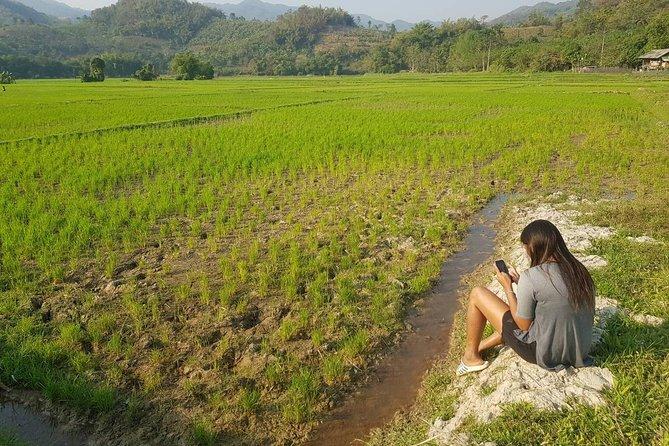 1 day Hill Tribe Trekking in Mae Yao, Chiang Rai
