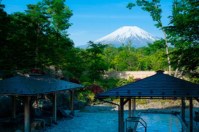 Onsen with Mount Fuji View (Private Experience Without Tour Guide)