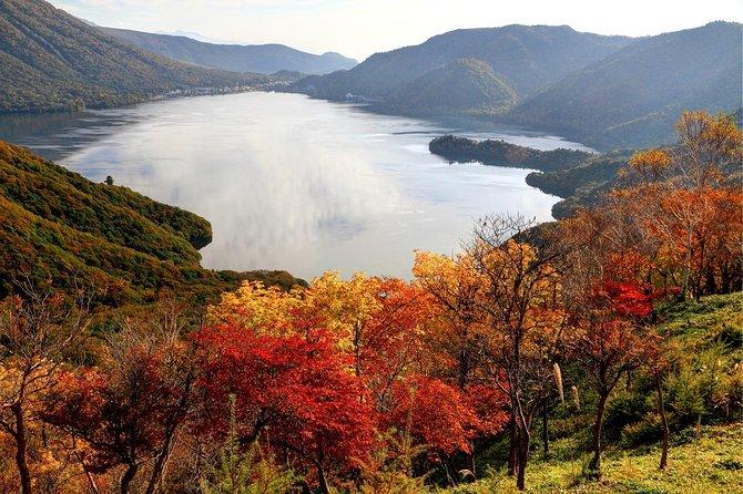 Excursão privada de um dia a Nikko, a capital do patrimônio e beleza do Japão