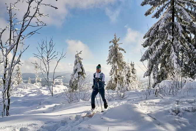 Snowshoe hike, ski touring on Arber