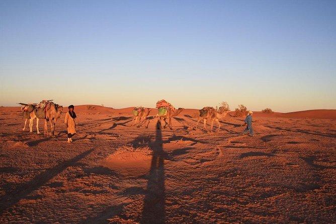 Great Sahara Camel Trek - Erg Chigaga - 7 days depart Marrakech