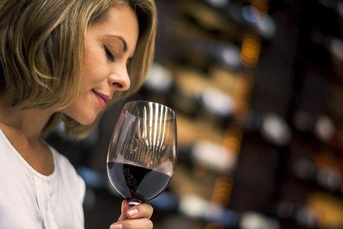 Wine Maker Winetasting in San Gimignano Winery of Tuscany