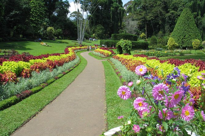 Kandy City Tour from Colombo Port (Private Day Tour) photo 2