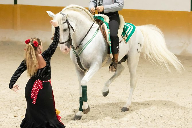 RITMO A CABALLO [flamenco - horse show] photo 6
