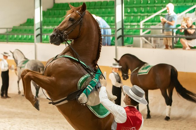 RITMO A CABALLO [flamenco - horse show] photo 8