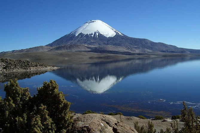 4-Days Unique Experience at the Chilean High Plateau