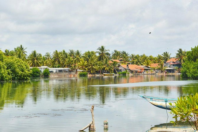 Fishing Village & Mangrove Tour Experince at Negombo (Starting from Colombo)