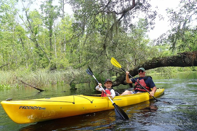 Guided Family-Friendly Kayak Tour: Experience Old Florida
