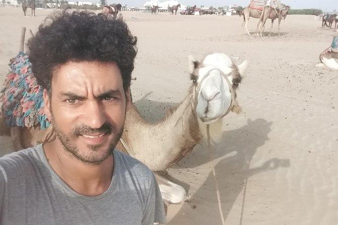 Essaouira Private Dromedary Ride