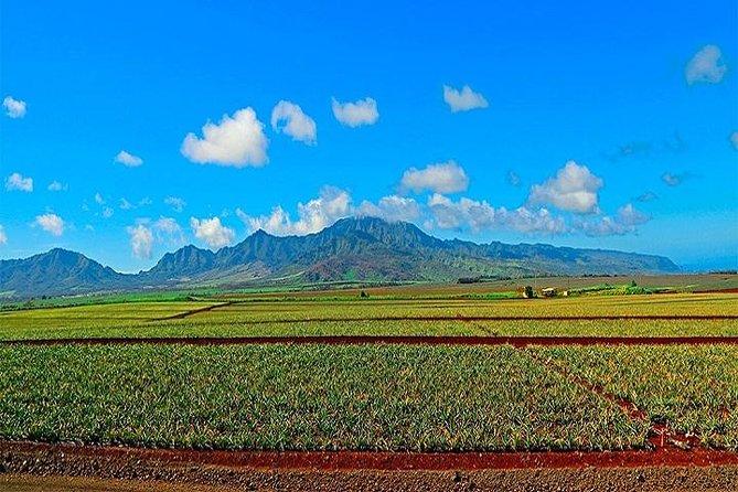 Grand Circle Island Experience from Waikiki Oahu