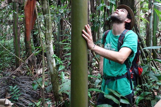 Manu Jungle Exploring (5 Days)