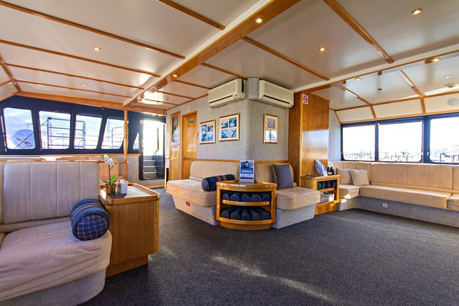 Whale-Watching Tour from Augusta or Perth with Optional Captain's Lounge Upgrade photo 6