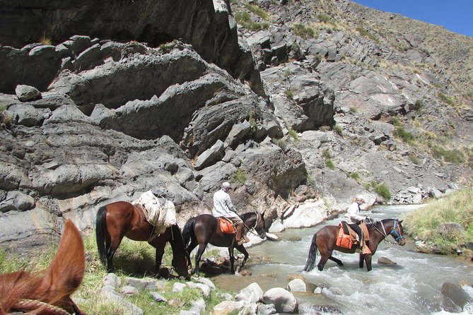 Horse riding for experienced riders at the foot of the Andes