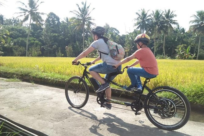 Adventure E-Bike Tour to See The Wonderful Ubud